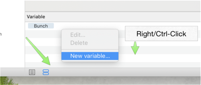 Adding the Bunch variable to the Automator Workflow